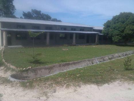school green 3